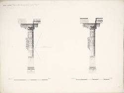 Dholka, Gujarat: Pillars in the corridor of the Tanka Masjid f.31